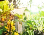 How to Grow a Magic Garden